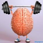 Управление умом в йоге