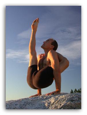 школа аштанга виньяса йоги
