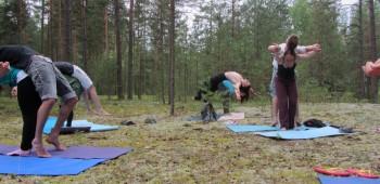 элементы парной йоги