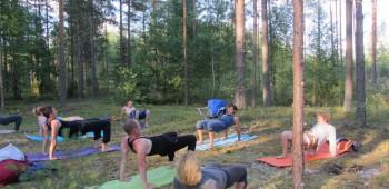 практика йоги в лесу