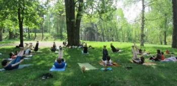 йога на природе с друзьями