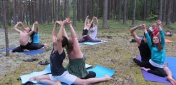 йога с партнером элементы