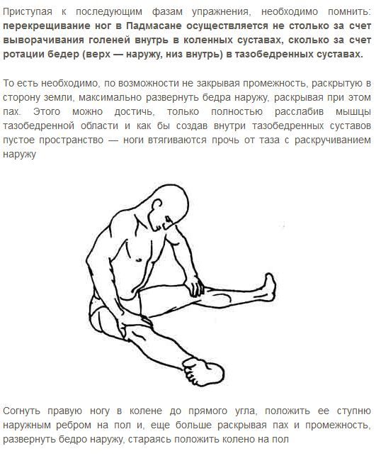 техника падмасаны шивананда2