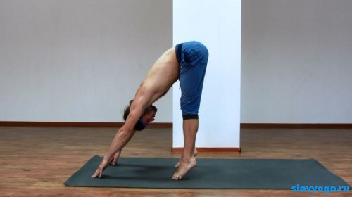 комплекс йоги для похудения