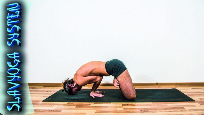 падма майюрасана йога