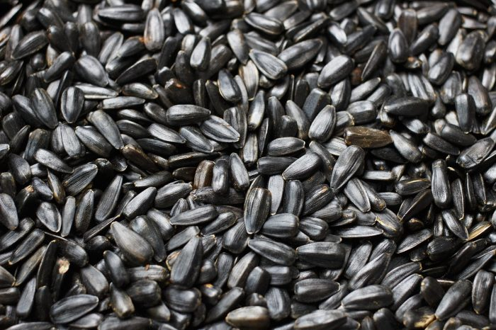 семена для питания капха доши