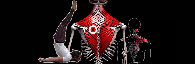 сильно болит спина в области лопаток