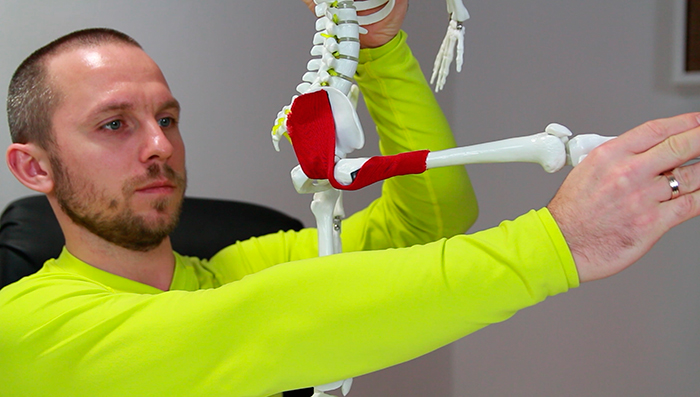 болит большая ягодичная мышца что делать